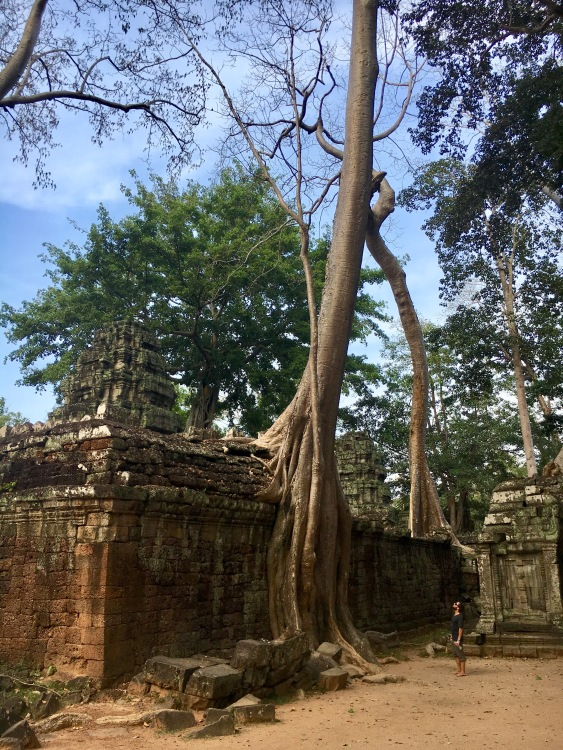 Connor Ta Prohm
