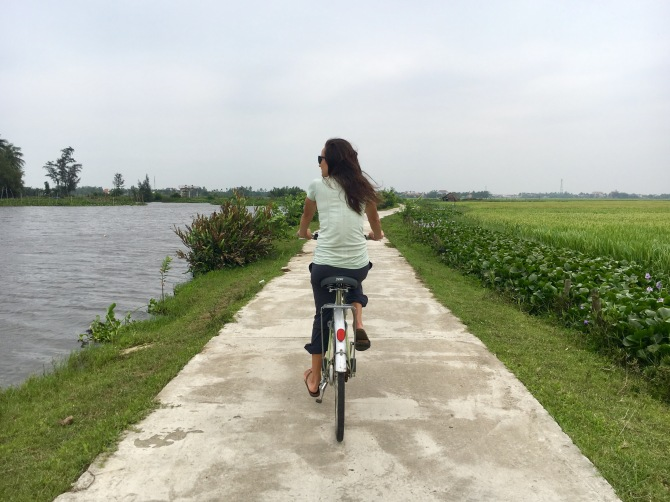 Cycling in Hoi An amongst the rice fields, rivers, and cow pastures