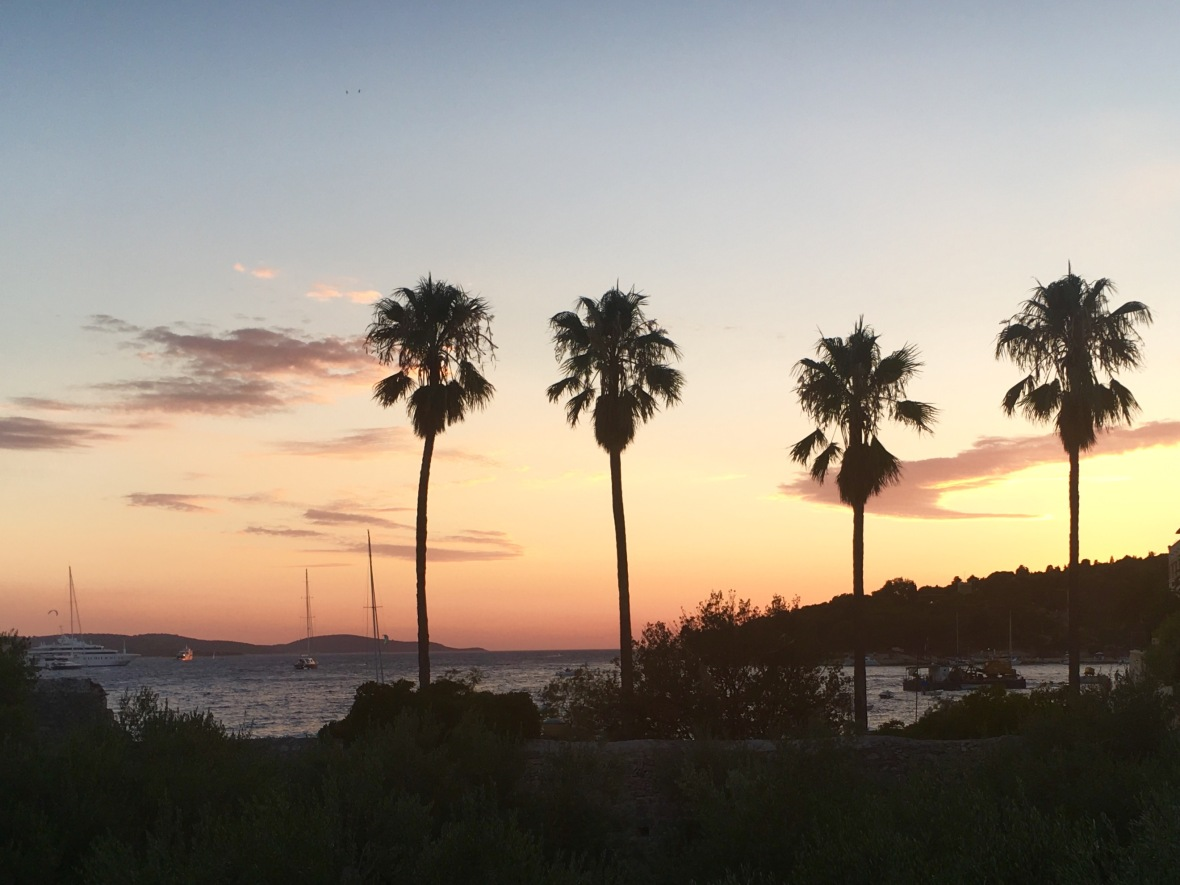 Hvar sunset palms