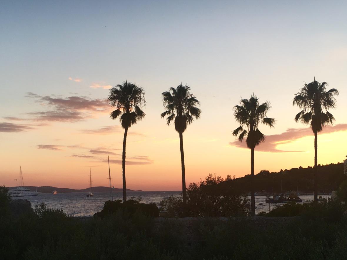Hvar sunset palms