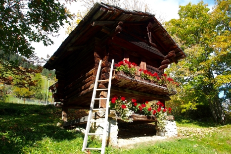 These adorable, old style Swiss cottages are everywhere
